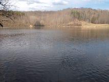 狗Run湖在3月下旬 免版税图库摄影