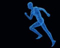 Run digital man. Run digiital men. Texture 3d models a blue transparent grid on a black background Stock Images