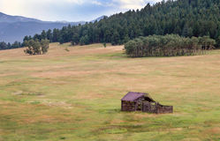 Run down cabin in colorado Royalty Free Stock Photo