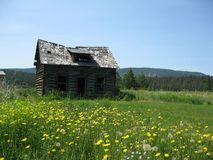 Run down old log cabin Royalty Free Stock Image