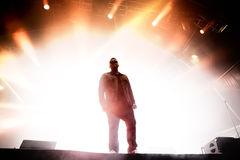 Run the Jewels (hip hop band) performs at Primavera Sound 201 Stock Image
