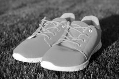 Run the life. Sneakers on green grass. Pair of sneakers on sunny outdoor. Sport shoes of orange fabric material on white. Sole. Fashion style and trend. Sport stock images