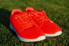 Run the life Sneakers on green grass. Pair of sneakers on sunny outdoor. Sport shoes of orange fabric material on white. Sole. Fashion style and trend. Sport royalty free stock images