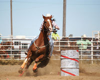 Run for the line. Girl barrel racing at rodeo Royalty Free Stock Images