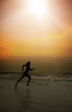 Run in sunset Royalty Free Stock Image