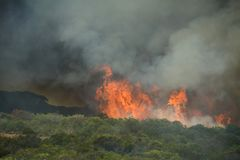 Runaway coastal bush fire. Very hot coastal bush fire burning out of control Stock Photo