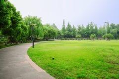 Rund bana runt om gräs- gräsmatta i solig sommareftermiddag Arkivfoto