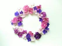 Rund blom- ram av mång--färgade violetsblommor royaltyfri bild