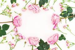 Rund blom- ram som göras av rosa rosor på vit bakgrund Lekmanna- lägenhet, bästa sikt Valentindagsammansättning fotografering för bildbyråer
