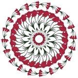 Rund blommas bakgrund Arkivfoto