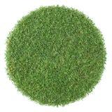 rund form för gräs Arkivbild