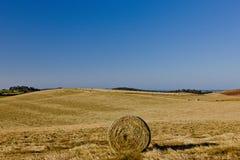 Rund höbal i ett fält arkivfoton