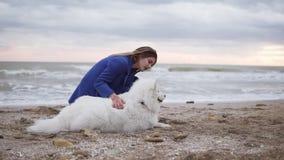 Rund kamerarörelse: sammanträde för ung kvinna på sanden och omfamna hennes hund av Samoyedaveln vid havet vitt arkivfilmer
