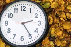 Rund klocka som ligger på höstsidor Arkivfoton