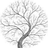 Rund kontur, yggdrasilträd Svartvit vektorillustration royaltyfri illustrationer