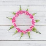 Rund krans som göras från rosa nejlikablommor Royaltyfri Foto