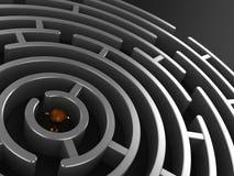 rund labyrint 3D med priset Arkivbild