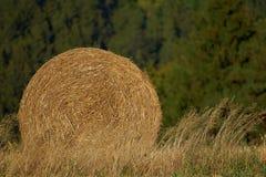 Rund packe av sugrör Lantligt landskap med jordbruks- fält Fältet skördas Sun är glänsande Royaltyfria Foton