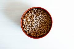 Rund platta överst av mat royaltyfri fotografi