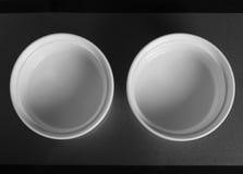 Rund porslinbunke för två vit Royaltyfri Fotografi