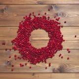 Rund ram av röda tranbär på brun träbakgrund Royaltyfri Foto