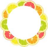 Rund ram från skivor av citronen, apelsin, limefrukt, grapefrukt Royaltyfri Bild