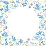 Rund ram med glömma-mig-nots blommor Royaltyfri Foto