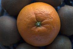 Rund sammansättning som göras av nya frukter: apelsin och kiwier Arkivfoto