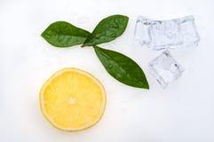 Rund skiva av den ljusa, nya saftiga citronen och få gröna sidor och iskuber på en vit bakgrund Royaltyfri Fotografi