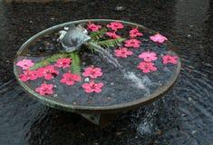 Rund vattenspringbrunn med fisken och rött sväva för blommor Royaltyfria Foton