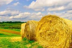 Runda baler av hö i fältet Upstate New York Arkivfoto