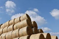 Runda baler av sugrör som rätas ut till en hög Bakgrund av himlen Royaltyfri Foto
