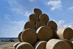 Runda baler av sugrör som rätas ut till en hög Bakgrund av himlen Royaltyfria Foton