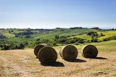 Runda höbaler, Monferrato kullar, Piedmont, Italien Royaltyfria Bilder