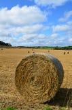 Runda höbaler på en Sussex lantgård Royaltyfri Foto