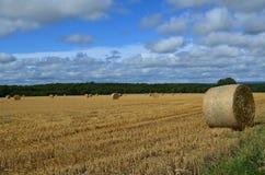 Runda höbaler på en Sussex lantgård Arkivbild