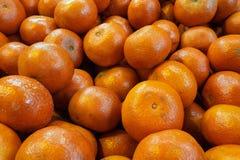 Runda orange apelsiner i den skinande huden, matbakgrund av apelsiner Arkivfoton