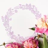 runda ramowy Różowe peonie na białym tle Cięcie od papieru Obraz Stock
