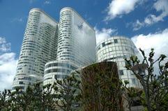 runda skyskrapatrees arkivbild