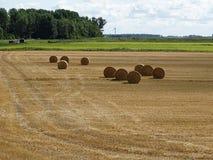 Runda sugrörbaler på det skördade fältet i solen l arkivbild
