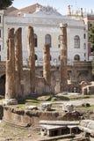 Runda tempelkolonner Rest av den Pompeys teatern Forntida universitetsområde Martius italy rome Royaltyfri Bild