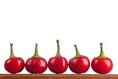 Runda varma kyliga peppar på en tabell Arkivfoto