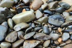 Rundade färgrika stenar på stranden Royaltyfri Foto