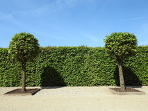 Rundale Palace park, Latvia Royalty Free Stock Photography