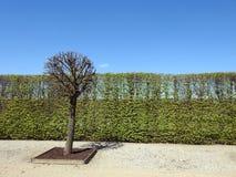Rundale palace park, Latvia Stock Photography