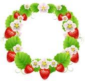 Rundan inramar med jordgubbar Royaltyfri Illustrationer