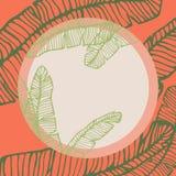 Rundaram för tropisk växt, kopia-Spa? e med konturer av banansidor royaltyfri illustrationer