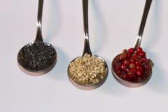 Rundaskedar med smakliga kryddor för att laga mat Arkivbild