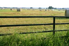 Runde Ballen des Wiesenwiese-Bauernhofes in Texas stockfotografie