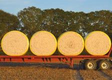 Runde Baumwollmodule geladen auf Flachbett Stockbild